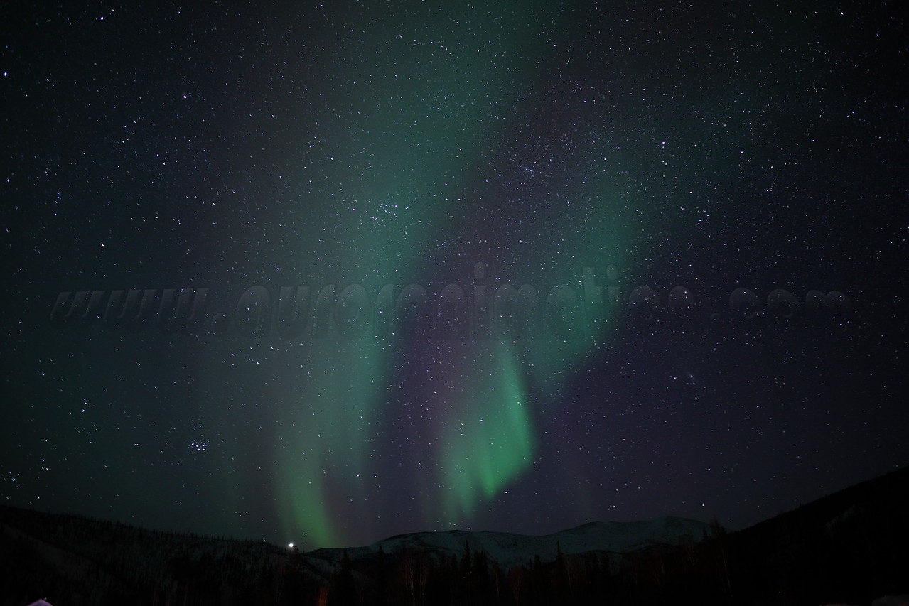 Auroral curtains with planet Jupiter and the Pleiades<br /> captured from the air strip at Chena Hot Springs at 00:57:19 am on March 23, 2012<br /> Constellations: Taurus, Auriga, Perseus, Cassiopeia, Triangulum, Andromeda<br /> <br /> Photo details: Canon EOS 5D Mark II, Zeiss Distagon 25mm f/2.0 ZE lens