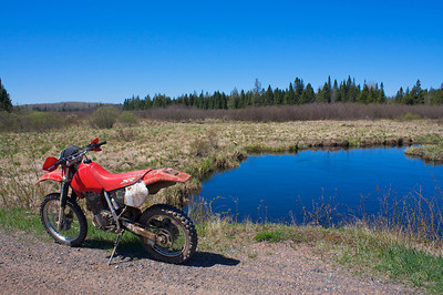 Dingdong Creek and forest road 347. The bikes a little bit of a mess here. I had it in a hole with water above the engine case......