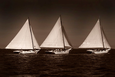 20100907_Deal Island Skipjack race