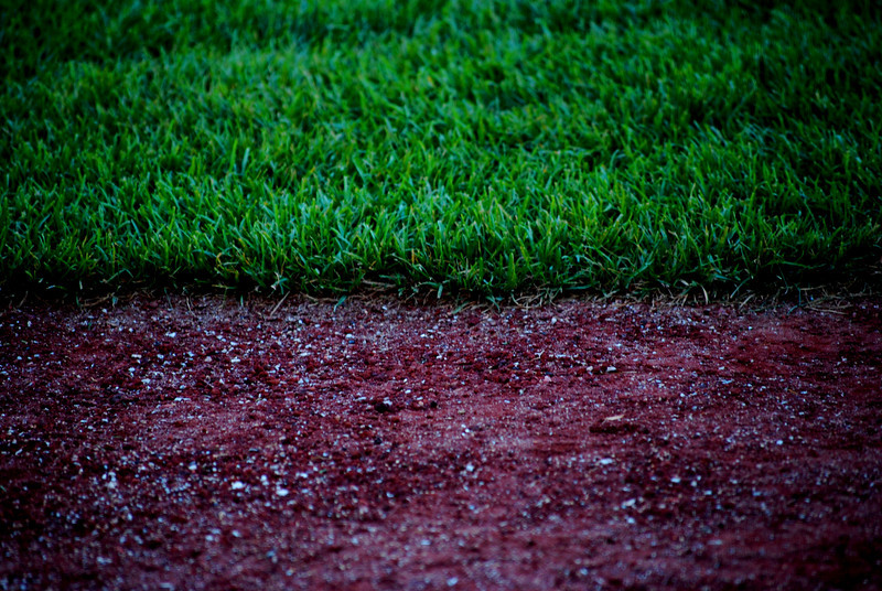 Wrigley Field Grass/Dirt