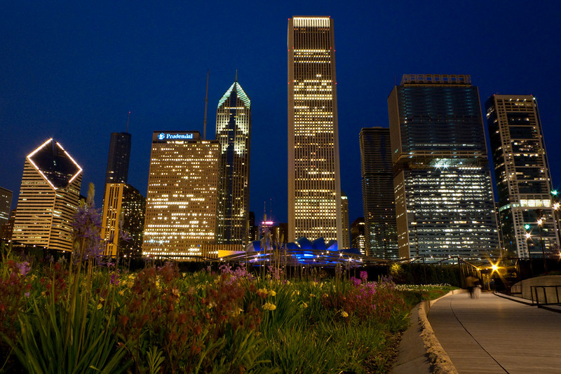 12 May 2009-  The flowers are out, as seen during an evening walk through Lurie Garden in Chicago's Millennium Park.