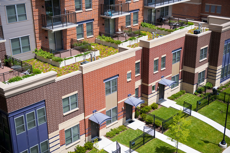 14 May 2010- Green roofs on new homes in the Parkside of Old Town development (formerly known as Cabrini Green).