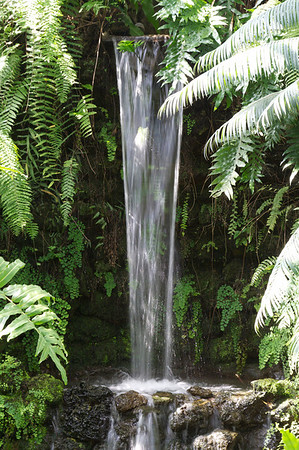 Waterfall - Garfield Park Conservatory