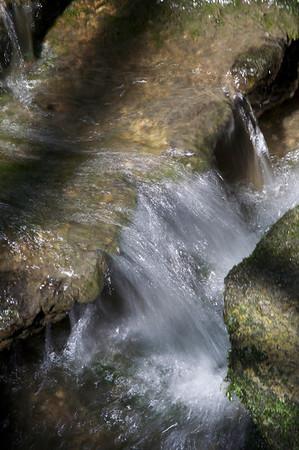Water - Garfield Park Conservatory