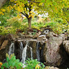 Chicago Botanic Garden 3