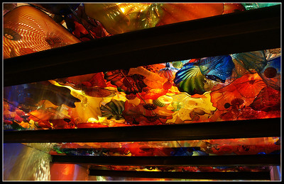 """Ocean Reef Ceiling"" This rooms ceiling was all blown glass, resembling an ocean reef."