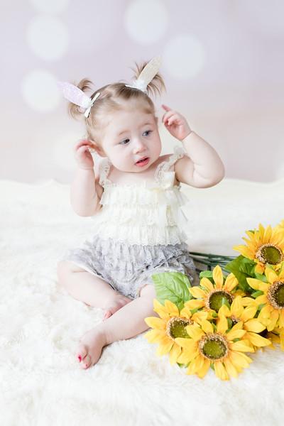 Sunflower-015