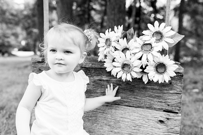 Sunflower-008