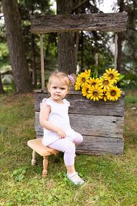 Sunflower-003