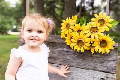 Sunflower-013