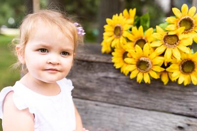 Sunflower-017