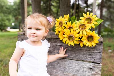 Sunflower-007