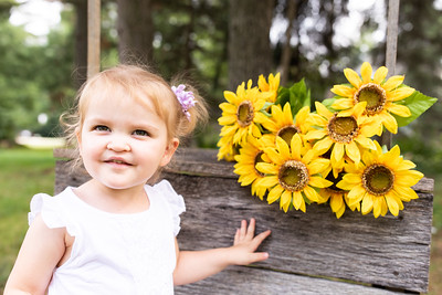 Sunflower-009