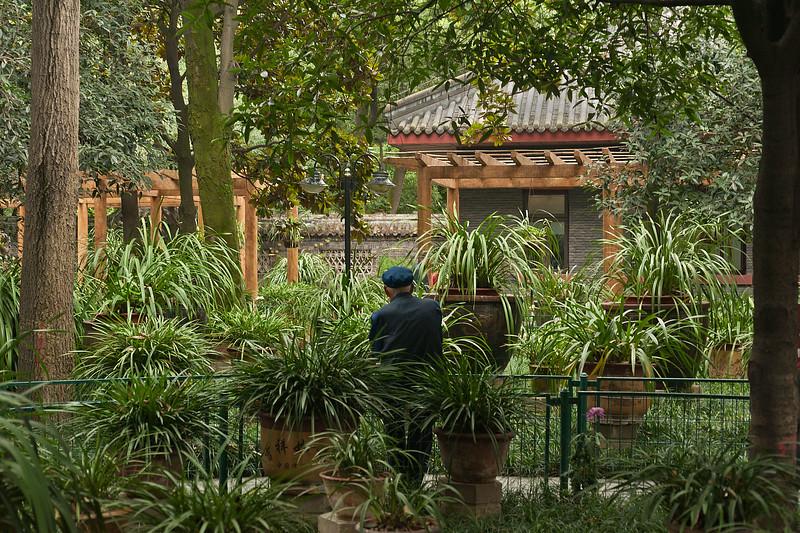 Renmin Park, Chengdu