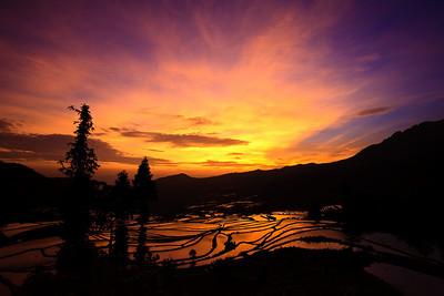 Magic at dawn Yuanyang Rice Terraces, Yunnan Province, China 黎明魔術 元陽梯田,雲南省,中國