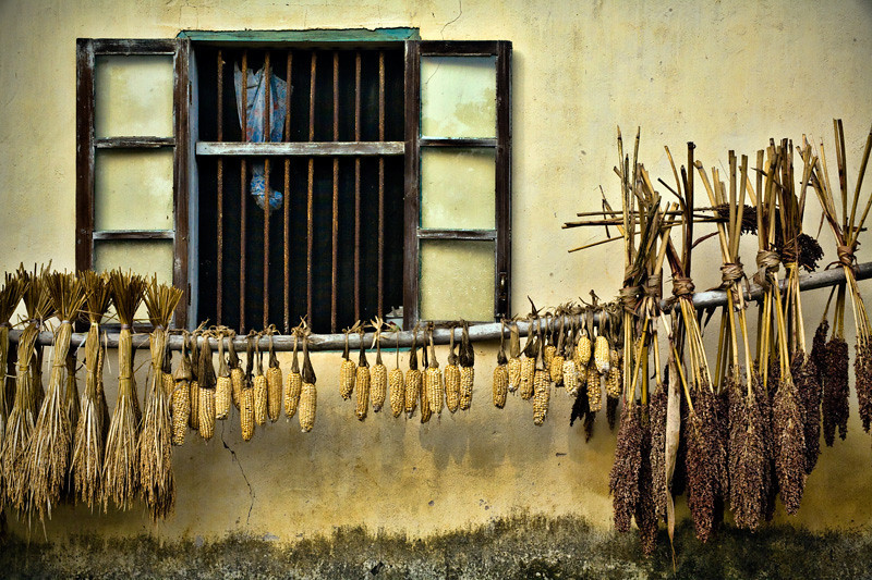 Drying Corn by Window - Yangshuo, China