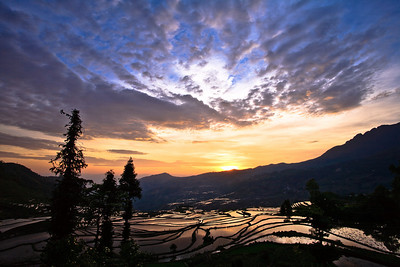 Rise and Shine Yuanyang Rice Terraces, Yunnan Province, China 醒來 元陽梯田,雲南省,中國