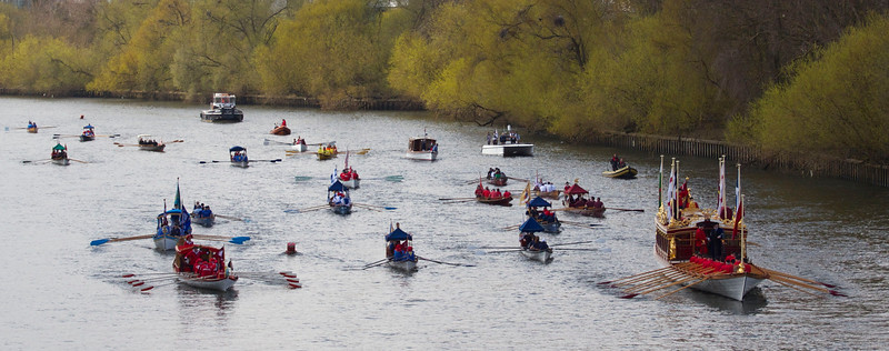 Royal rowbarge Gloriana leads the 2013 Tudor Pull towards Kew Bridge.