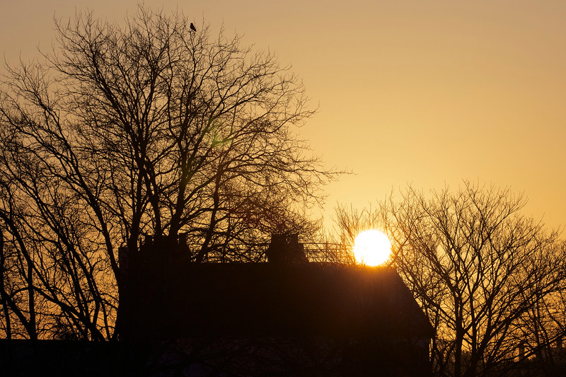 Sunrise over Strand-on-the-Green in Chiswick. April 2013.