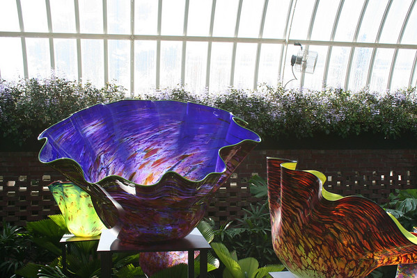 Chiully At Phipps Conservatory