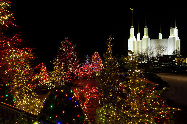 Christmas Lights Mormon Temple