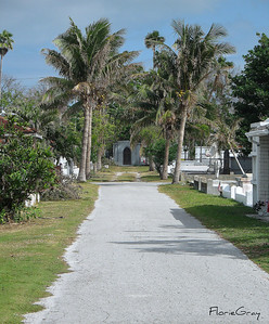 Path to Eternity?  Beautiful and serene Key West Cemetery.