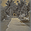 Paved With Good Intentions <br /> Key West Cemetery