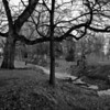 City Park 2012-1