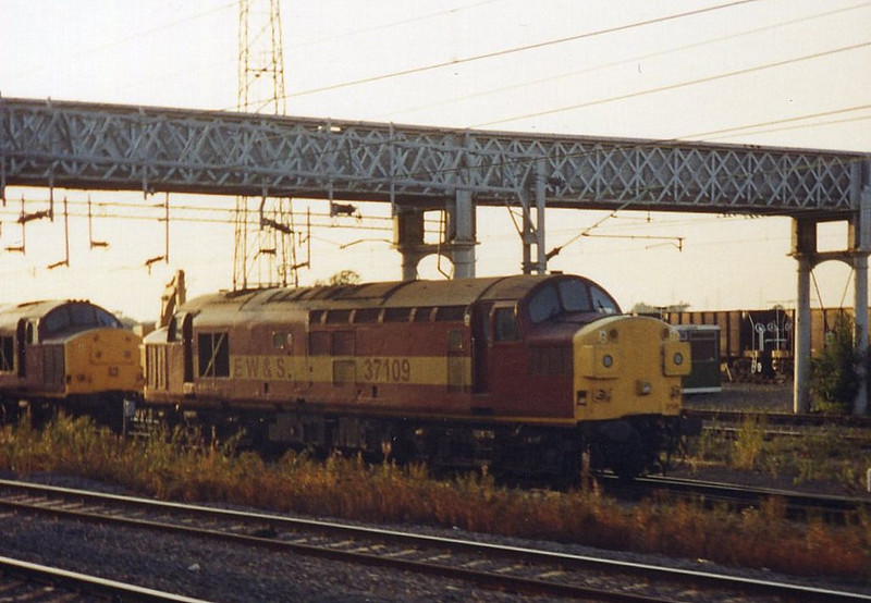 37109, Rugby. August 1999.