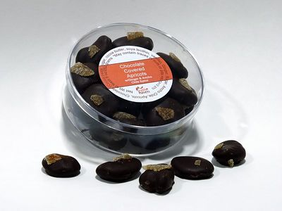 Chocolate Covered Apricots Photo: 3