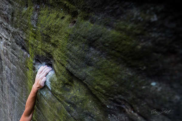 Mountaineers Route_Joey Williams_Coopers Rocks_WV_photos by Gabe DeWitt_October 28, 2014-3-2