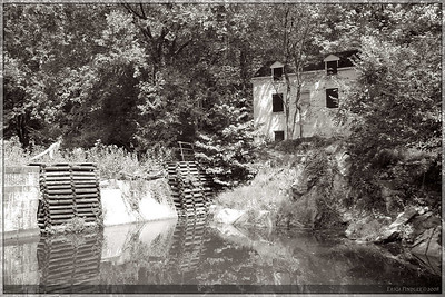 A view along the C&O canal.