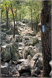 A section of Billy Goat Trail:  You can see why it gets its name.