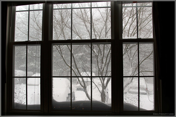 A picture taken out the window while it was storming.  It snowed for a little over 24 hours straight.