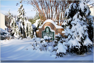 This is the sign for my subdivision.  Those snow covered trees look like they were made for a post card.