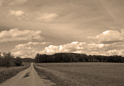 Backroads of the Minnesota lake region!  Original is in gallery.  Have a blessed day!