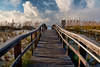 Walkway to Beach - Pensacola, Florida
