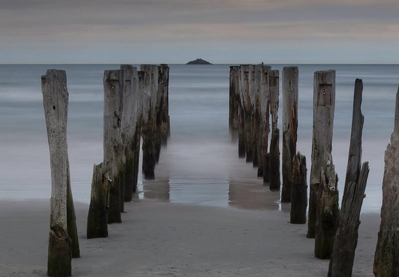 Pilings - Dunedin, New Zealand