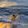 CC101. Long board surfer