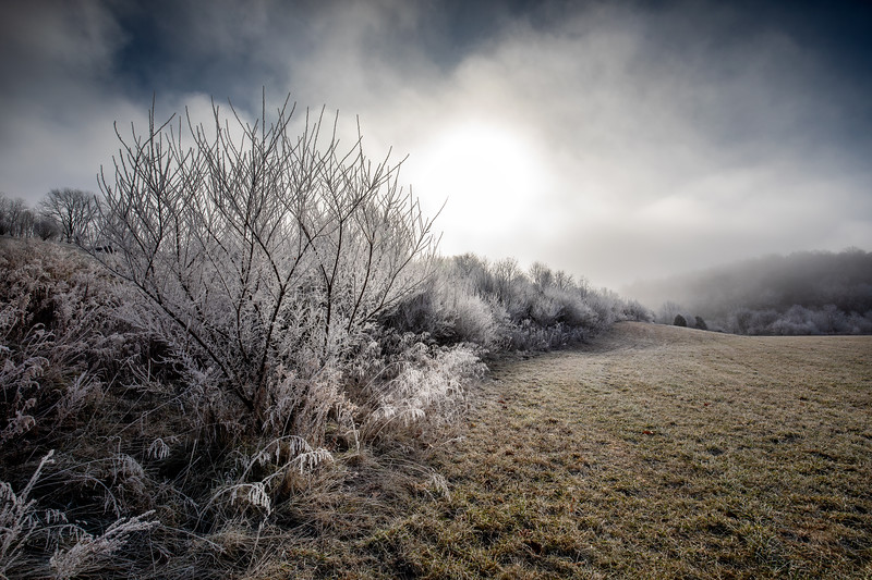 Advection Frost