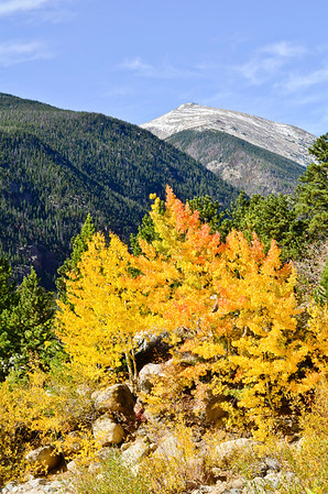 FAll color at RMNP