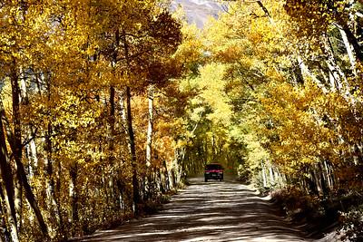 Colorado 5