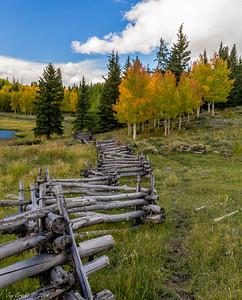 Beaver Lake Bole Fence