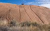 Sandstone near Escalante, Utah