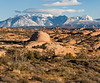 Petrified sandunes and the distant La Sal Mountains, Arches National Park, Utah