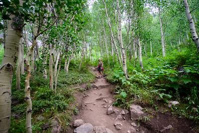 Colorado Hikes and Wildflowers