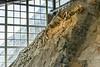 Dinosaur National Monument Quarry Interior #2