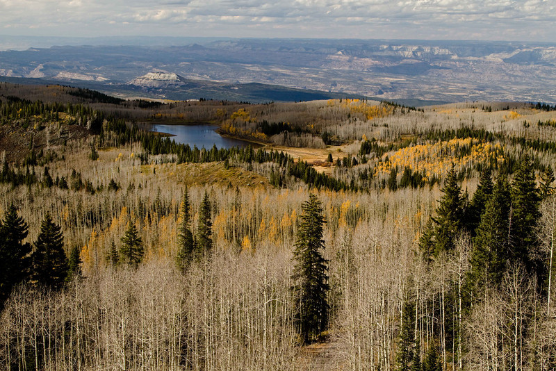 Taking in the view north on Grand Mesa.<br /> Photo © Carl Clark