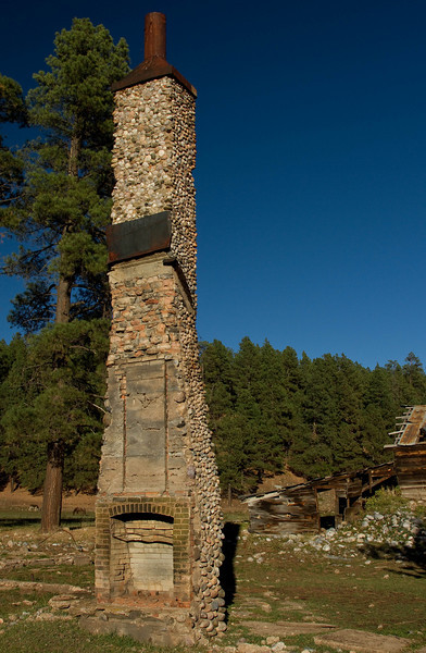 A testimonial to longevity, near Vallecito Lake.<br /> Photo © Cindy Clark