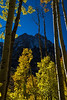 Aspens frame these peaks near Maroon Bells.<br /> Photo © Cindy Clark